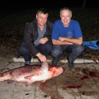 Ещё одна DX-рыба!!! Анатолий R6AW и Василий R7AA.